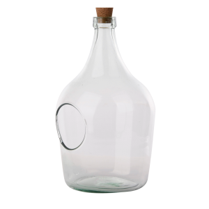 Open Terrarium Bottle 3 Litre