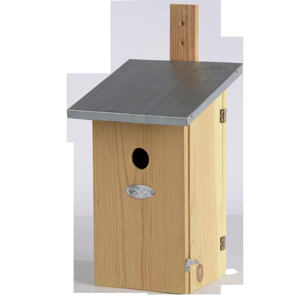 Nest Box Observation
