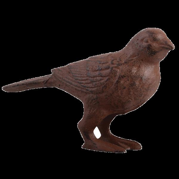 Bird L